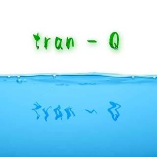 0021_tran-q.jpg
